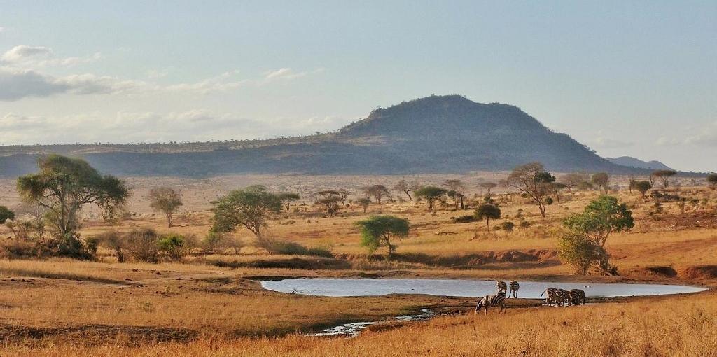 Scenérie národní parku Tsavo West