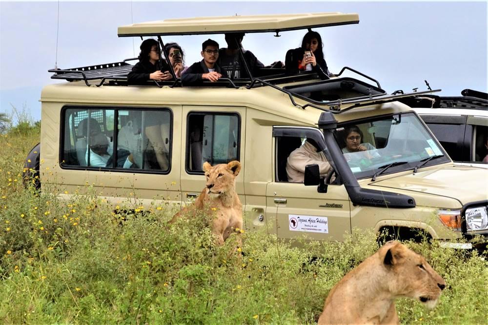Všechny safari vozy mají výsuvnou střechu