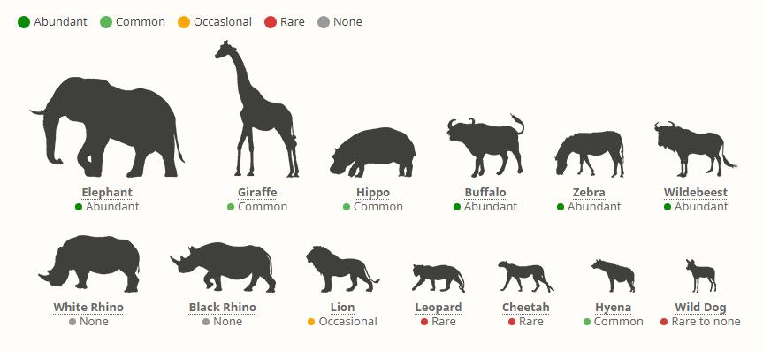 Národní park Amboseli - výskyt zvířat