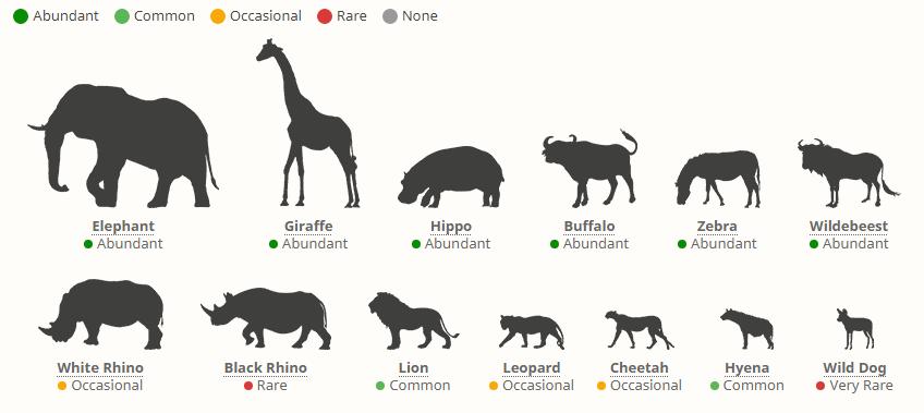 Národní parky v Keni - výskyt zvířat