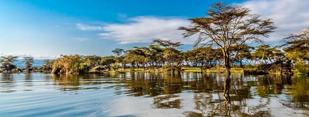 jezero Lake Naivasha